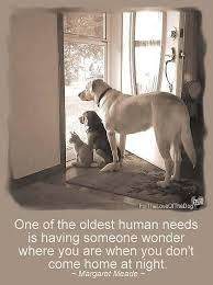 dog quotes - Google Search
