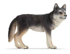 Schleich Wolf by Schleich. Save 12 Off!. $4.39. With coats of gray, white, red, brown or black, these canines are well-suited for any terrain. Wolves are carnivorous canines that vary in size depending on their habitat. They travel in packs led by the Alpha pair. They hunt in packs too; this way they can take down bigger prey. A prey that stands its ground has a better chance for survival since wolves can chase their prey, reaching speeds of forty miles per hour with the help of their…