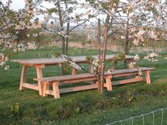 Sitting at your #oak table surrounded by #blossoms