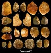 Image result for Paleolithic Artifacts