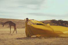 Taylor Swift- Wildest Dreams Music Video