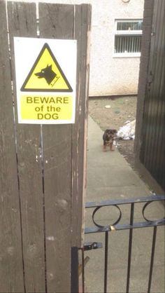 Beware Of Dog Signs You Can Probably Just Ignore - 15 Pics