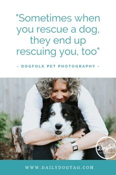 Eddie the senior Border Collie had a touching in home photography session with Dogfolk Loss Of Dog, Pet Loss, Melbourne, Pet Photographer, Perfect Timing, Beautiful Stories, Dog Quotes, Border Collie, Dog Life