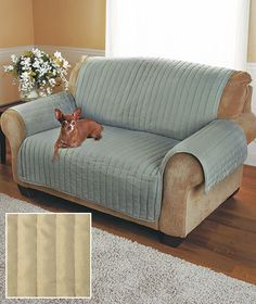 Quilted Twill Furniture Covers are a great way to guard against spills, stains, kids and pets while adding extra comfort and style. The cover lays right on top of the seating, making it easy to put on and take off. Furniture, Sofa Covers, Sofa Inspiration, Sofa Furniture, Couch Covers, Recliner Cover, Love Seat, Best Sofa, Furniture Covers