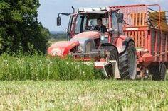 ipps zur Grünfütterung im Stall. Vor allem Wechselwiesen und leguminosenreiche Pflanzenbestände eignen sich gut zum Eingrasen. Foto: Danner Tractors, Pictures, Beef Farming, Interesting Facts, Landscape, Plants, Tips