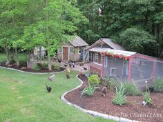The Chicken Chick®: Virtual Tour de Coop... Landscaping around the chicken coop, improves drainage, reduces mowing, looks good, and gives chickens a place to burrow and loll in the sunshine. Also, coop window box!