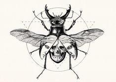 Siren Stag Beetle is part of Lotus tattoos Wrist Small - Printed using high quality archival pigment ink and matte archival paper Inks and paper are manufactured to be used together creating bright, clear and long last prints Tattoo Sketches, Tattoo Drawings, Art Sketches, Kunst Tattoos, Neue Tattoos, Tattoo Caveira, Tattoo L, Siren Tattoo, Occult Art