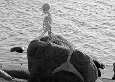 mermaid remains