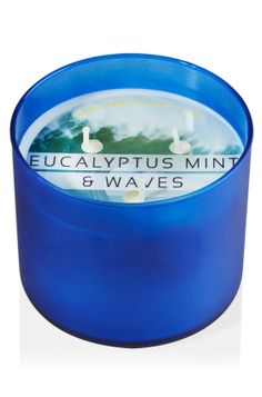 Eucalyptus Mint & Waves 3-Wick Candle - Slatkin & Co. - Bath & Body Works