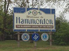 Hammonton, NJ