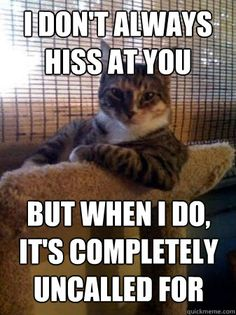 I don't always hiss at you.