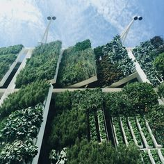 Claudia Lorusso - Picture gallery  EXPO Milan 2015-Automated Vertical Farm at the USA Pavilion.