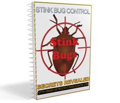 Stop stink bugs