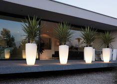 Bestel mooie combinaties van kamerplanten en plantenbakken bij Chicplants, ook voor prachtige losse kamerplanten en plantenbakken. Voor thuis of interieurbeplanting voor op uw bedrijf.