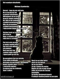 Wisława Szymborska - jeszcze raz Kot w pustym mieszkaniu :-)