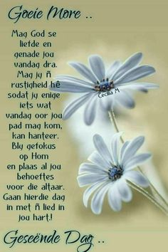 Lekker Dag, Evening Greetings, Afrikaanse Quotes, Goeie More, Special Quotes, Good Night Quotes, Quotes About God, Pretty Pictures, Pretty Pics