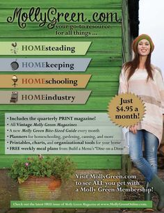 Molly Green Magazine-Just $4.95 a month.  Visit mollygreen.com to see All you get with a Molly Green Membership! The Old Schoolhouse Magazine - Summer 2015 - Page 121 http://www.thehomeschoolmagazine-digital.com/thehomeschoolmagazine/2015x3?pm=1&u1=texterity&linkImageSrc=/thehomeschoolmagazine/2015x3/data/imgpages/tn/0122_bqwwfa.gif/&pg=124#pg124