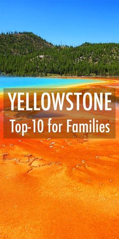 Top 10 things to do in Yellowstone for families with children: