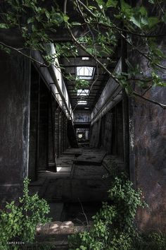 Abandoned Brickyard -Kalisz, PolandbyCamereon