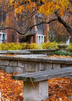 Autumn near St. Joan of Arc Chapel and Memorial Library at Marquette University.