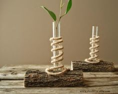 How to Recycle: Gorgeous Test Tube Vases