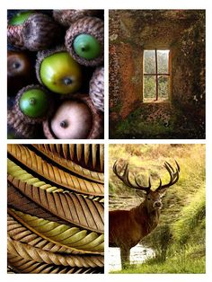 Autumn brown / autumn green color board. Also nice for living room.