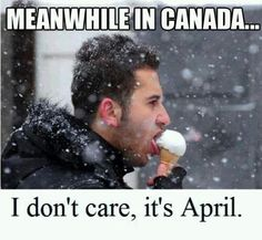"""40 Canadian Memes That'll Have You Poutine On Your Shoes To Go Right To Tim Horton's - Funny memes that """"GET IT"""" and want you to too. Get the latest funniest memes and keep up what is going on in the meme-o-sphere. Canada Funny, O Canada, Canada Humor, Memes Humor, Meanwhile In Canada, Canadian Things, Funny Quotes, Funny Memes, Funny Canadian Memes"""