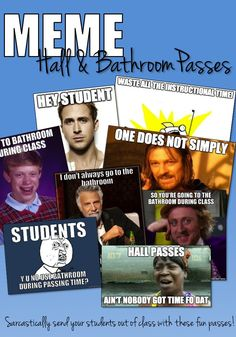 I'm thinking about getting these.   8 funny  sarcastic meme hall/bathroom passes.  Are my kids too young?