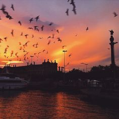 Barcelona by @daviddisabato