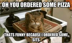 OH YOU ORDERED SOME PIZZA  THAT'S FUNNY BECAUSE I ORDERED SOME SITS