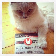 Questo omaggio del #backstageclub è MIO! #empitalia #rock #cat