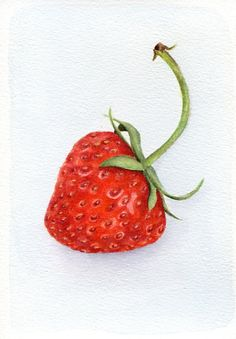 ORIGINAL Painting Strawberry Fuits Watercolors por ForestSpiritArt, £22.00