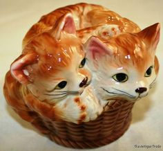 Cats in basket