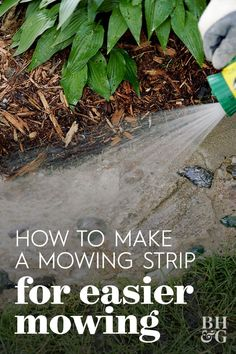 This DIY mowing strip is a paved strip between grass and beds or borders. Creating a mowing strip means you can mow your lawn without the worry of damaging plants or trimming afterward. #landscaping #mowingstrips #diy #gardeningtips #bhg Lawn Edging, Garden Edging, Farmhouse Landscaping, Landscaping Ideas, Container Gardening, Gardening Tips, Mowing Strip, Lawn Care, Growing Plants