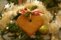 Kid Pet Friendly Edible Christmas Tree Ornaments Greenglancy Com Christmas