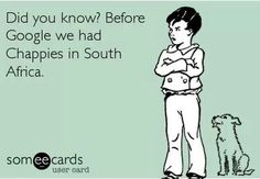 mzansi memes south africa & mzansi memes + mzansi memes no chill in + mzansi memes south africa + mzansi memes 2019