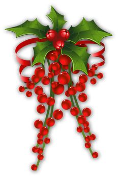 CHRISTMAS HOLLY *