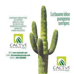 #Leaflet Cactus Adv Agency - 2013  #ilgiustospessore #marketing #ads #idea #content #logo #onlinemarketing #creativeagency #advertising #advertisingagency #b2b #b2c #branding #contentmarketing #graphicdesign #creative #publicity #pr #webmarketing #copywriting #startup #business #cactus #logodesign #logoinspirations