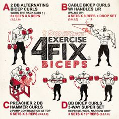 cool DEEZify.com - WORKOUT: 4 Exercise Fix - Biceps