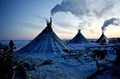"""Justin Jin, """"A colony of tents, or """"chums"""", belonging to Nenets herders stand in the Arctic tundra in the Russian Nenets Autonomous Region. Suki Avatar, Life In Russia, Pillars Of Eternity, Arctic Tundra, Medieval, Water Tribe, Fire Nation, World Photography, Colour Photography"""