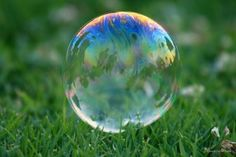 Bubble in the grass....reminds me of childhood days!