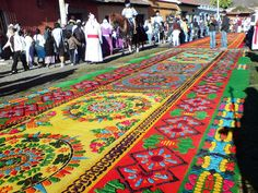 Alfombras at The Semana Santa Easter Festival in Antigua, Guatemala Check out the website to see Tikal, Guatemalan Textiles, Guatemalan Art, Spanish Festivals, Great Places, Beautiful Places, Easter Festival, Celebration Around The World, Alley Cat