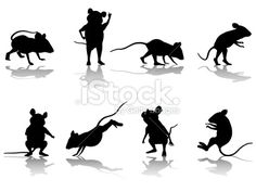 Mouse Silhouette Collection Royalty Free Stock Vector Art Illustration
