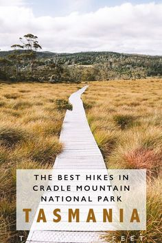 My Absolute Favourite Walks In Cradle Mountain National Park - The Sandy Feet hashtags Australia Travel Guide, Visit Australia, Queensland Australia, Western Australia, Tasmania Road Trip, Tasmania Travel, Beautiful Places To Visit, Cool Places To Visit, Oh The Places You'll Go