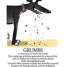 Richard Skipworth Tweeted: Another Greyhound Glossary entry - Inbox - 'Yahoo Mail'