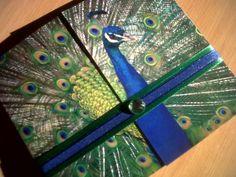 peacock theme invite