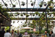 Ubicado en el Mercado Roma, uno de los hot spots de la ciudad, el bar Biergarten es altamente recomendable si lo que buscas es ir en un plan relax, pasarla bien con los amigos y beber una buena cer...