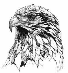 Laura Hyden - ArtsThread-Profil - Art Practice_Inspirations and picture examples - Beauty Bird Drawings, Animal Drawings, Tattoo Drawings, Animal Sketches, Art Sketches, Raabe Tattoo, Photoshop, Hawk Tattoo, Eagle Drawing