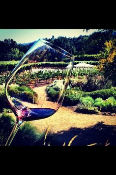 Duckhorn Winery, Napa California