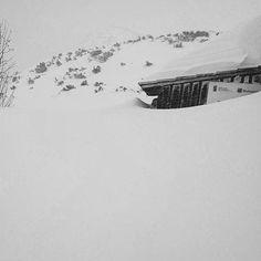"""via. @piecstawow """"#piecstawow #śnieg prawie #do dachu i zamieć. #wspaniale!""""  buff.ly/2g0g2t6"""